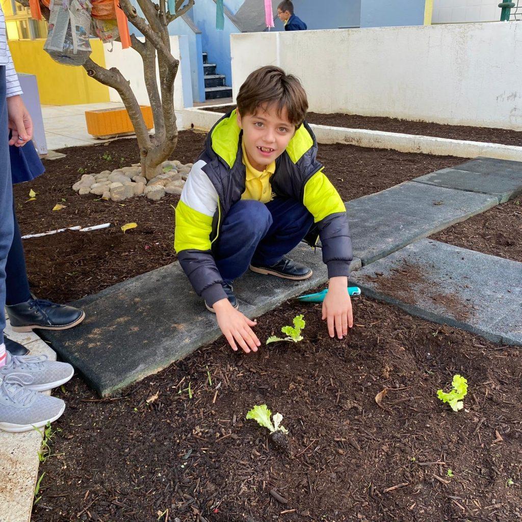 nutriverde-horta-colegio-tite-2