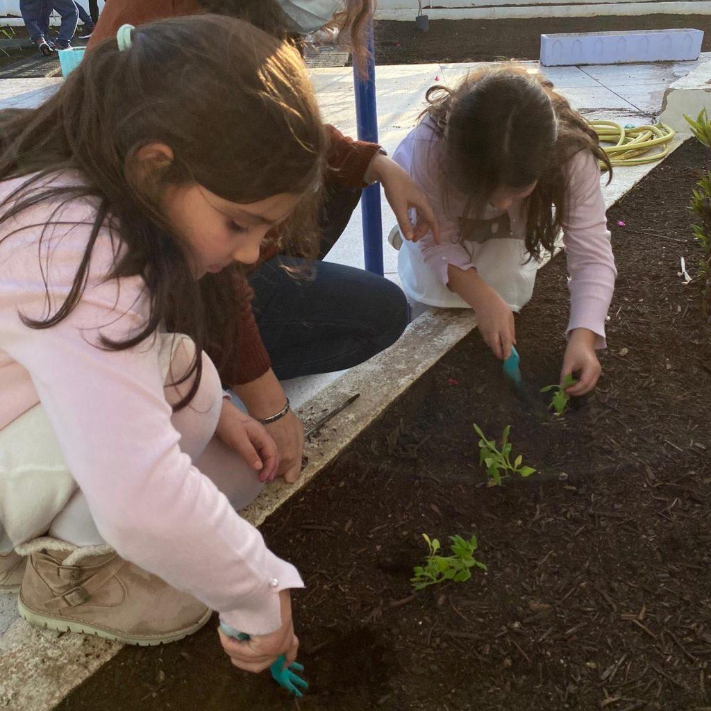 nutriverde-horta-colegio-tite-4