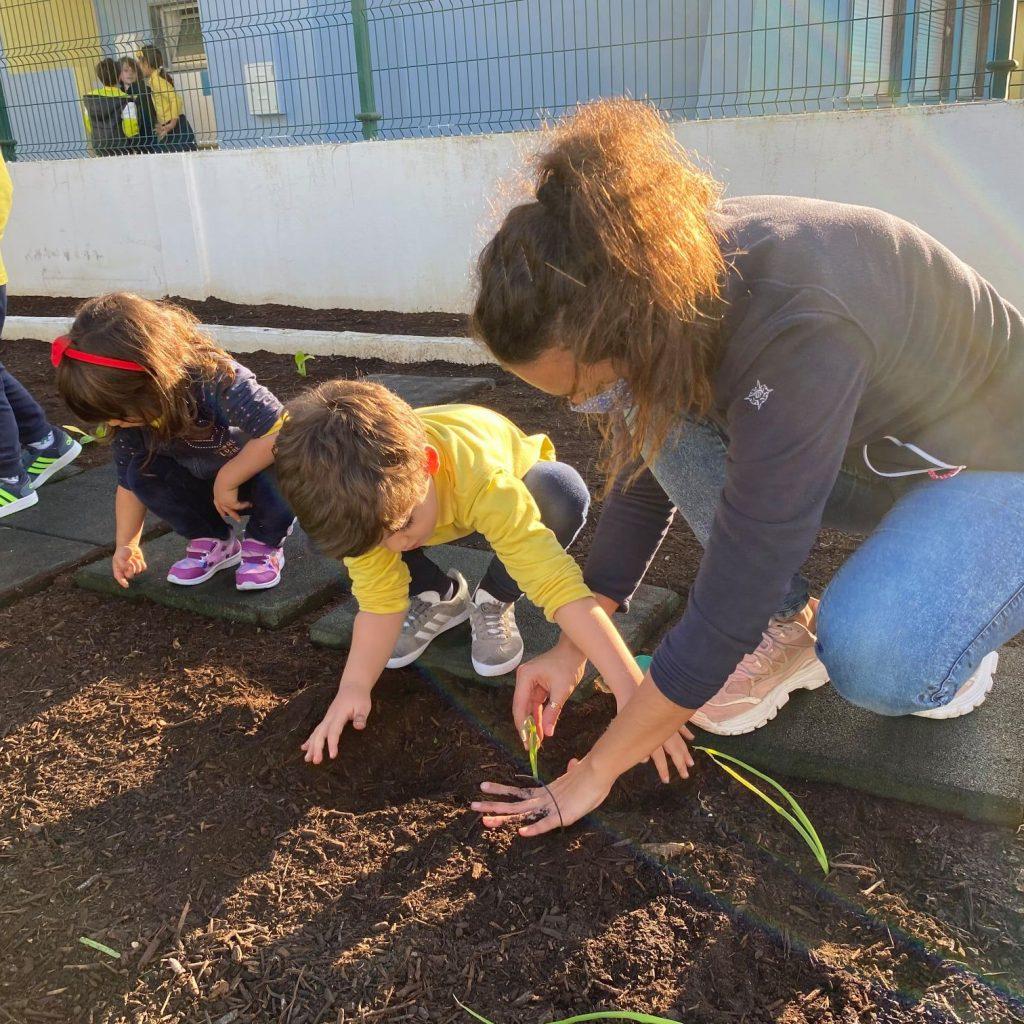nutriverde-horta-colegio-tite-9